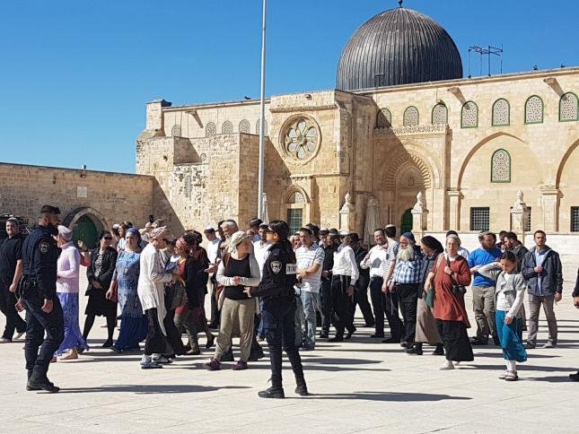 Photo of الأردن يحذر من استمرار الاعتداءات الإسرائيلية على الأقصى
