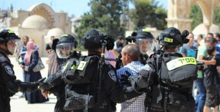 Photo of الاحتلال يعتقل عددا من المقدسيين بعد اعتداء مستوطنين عليهم