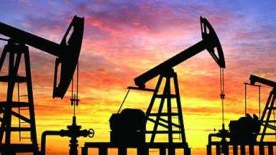 Photo of سعر برميل النفط يتراجع بنسبة 1.77 %