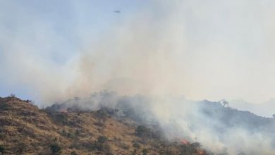 Photo of الدفاع المدني: عمليات إخماد حريق جبل عمد بالطائف مستمرة.. ولا إصابات