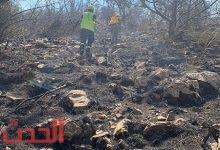 Photo of الدفاع المدني يحاصر حريق جبل (عمد) بثقيف